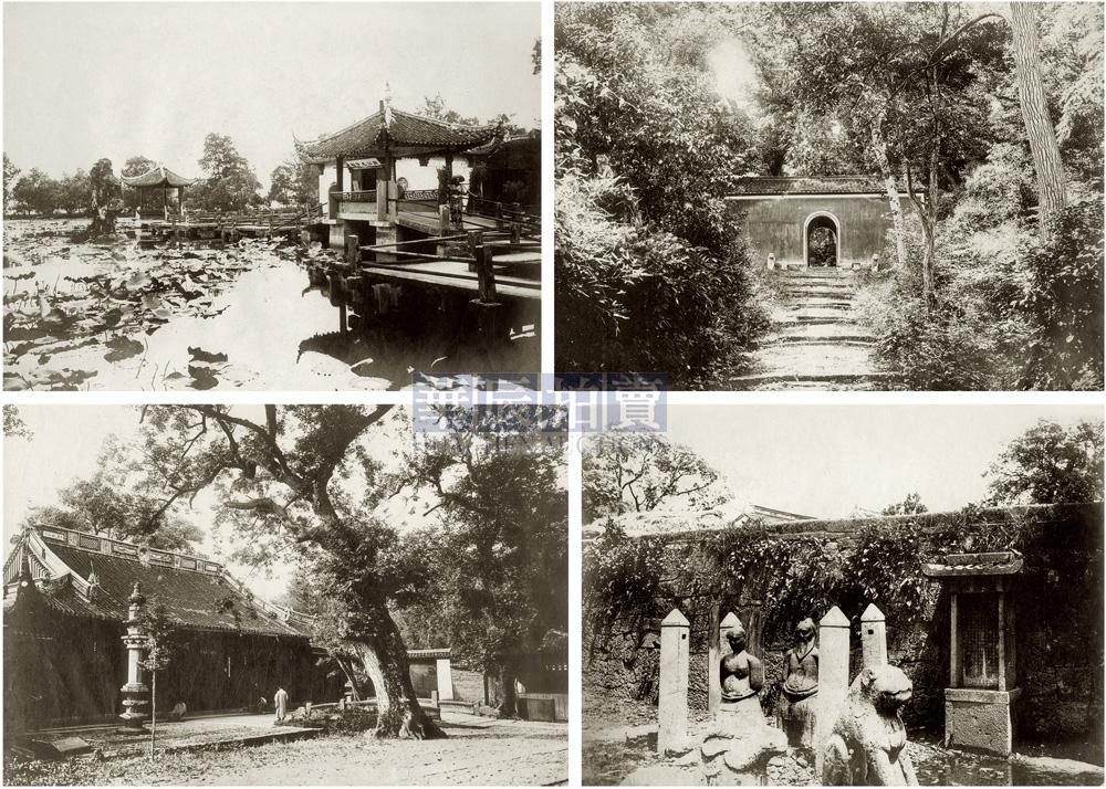 杭州西湖断桥写生