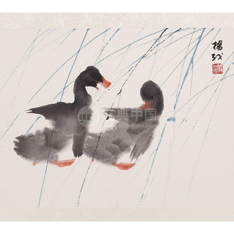 壁纸 动物 鸟 鸟类 800_800